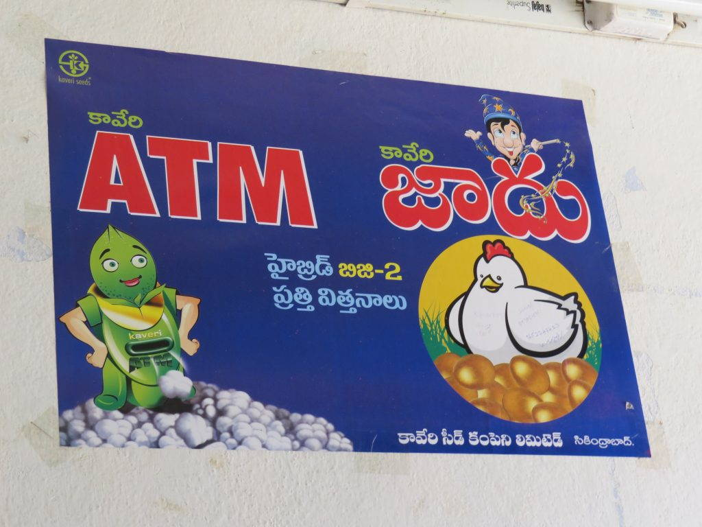 Cotton seed advertisement with cartoons