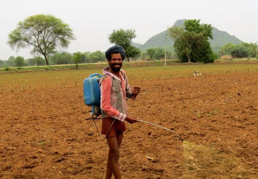 Farmer sprays pesticides in field