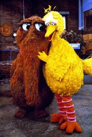Large yellow bird muppet hugs hairy brown muppet in an ecology of cuteness.