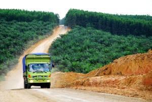 Truck on dirt road through green fields
