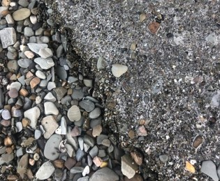 Black pebbles and white pieces of ice on gray beach.