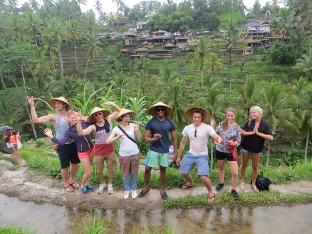 Moving around the world - rice