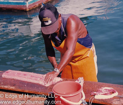 Fisherman cleaning the catch of the day. Acapulco, Mexico.