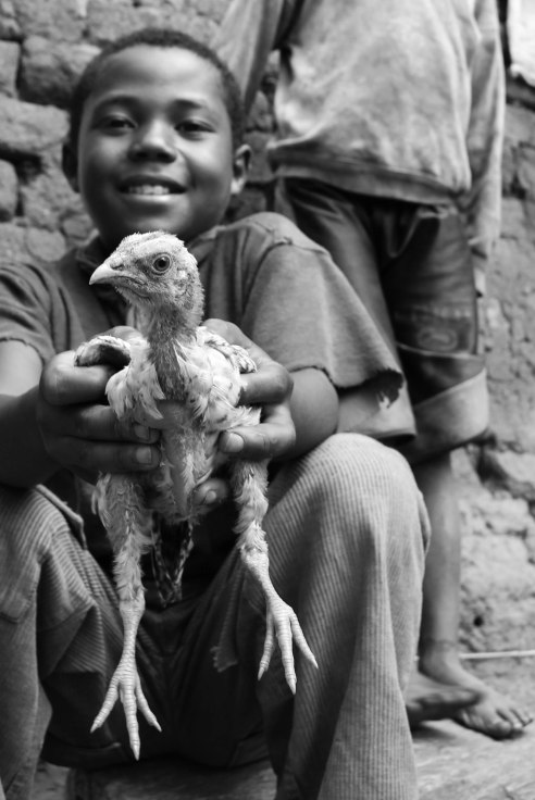 A boy shows off his prized chicken, Ambositra, Madagascar