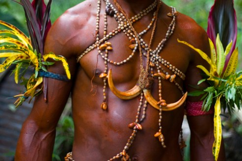 With skin covered in a red paste made from berries wearing leafy armbands and with bodies adorned with necklaces made from seashells and pig tusks, a young man are ready to perform in a 'sing-sing'. Barim Tribe - Madang, East Coast, PNG
