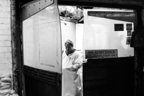 """Fishmonger"" Brixton, London UK"