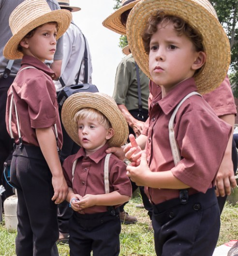 Three Young Amish Brothers