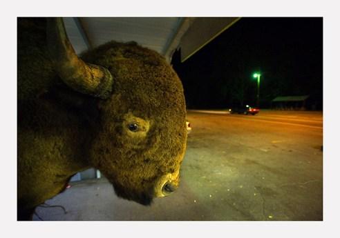 Buffalo Cherokee, North Carolina