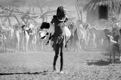 Himba girl with sheep in dust storm, Namibia