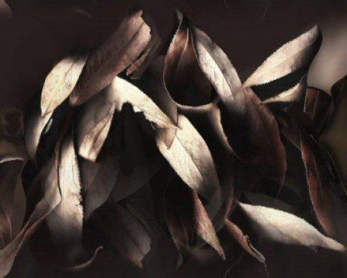 Leaves in Elegance - Digital Art