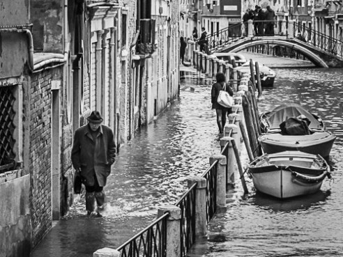 Business as Usual, Venice, Italy, 2015