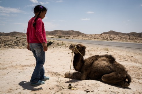 A little girl plays with her camel puppy. TOUJANE