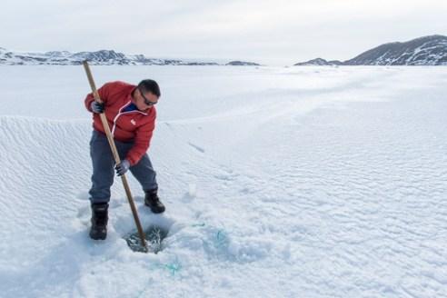 Groenland Est 2016