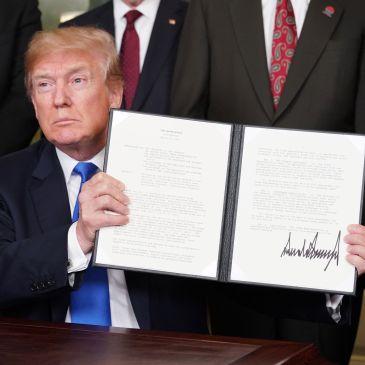 Trump Tariffs, Luke Scorziell
