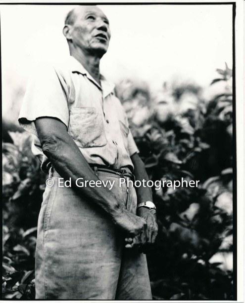 ah-hing-chow-kauai-taro-farmer-2666-64-16a-8-73