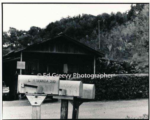 miranda-home-in-niumalu-nawiliwili-kauai-2666-71-11a-8-73