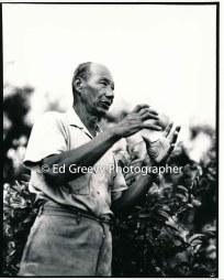 taro-farmer-ah-hing-chow-niumalu-nawiliwili-kauai-2666-64-14a-8-73