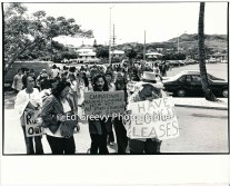 waiahole-waikane-residents-and-their-supporters-gather-for-protest-at-developer-joe-pao%ca%bbs-office-in-enchanted-lakes-2965-5-9a-4-7-76
