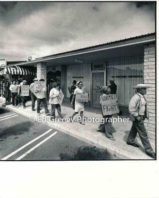 waiahole-waikane-residents-march-to-protest-developer-joe-pao%ca%bbs-development-plans-in-waiahole-waikane-2965-6-2-4-7-76