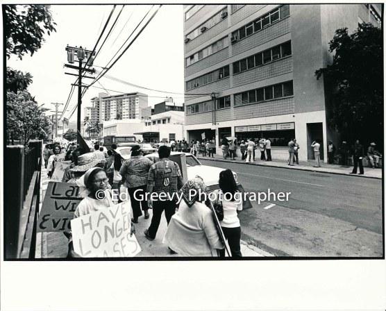 waiahole-waikane-residents-picket-labor-leader-art-rutledge%ca%bbs-unity-house-to-protest-rutledge-investment-in-waiahole-waikane-development-2965-2-23a-4-7-76
