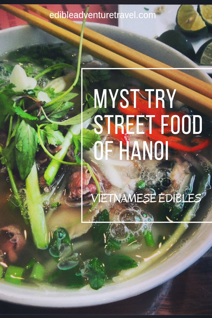 Must Try Street Food of Hanoi, a quick guide to the tasty edibles along the street.