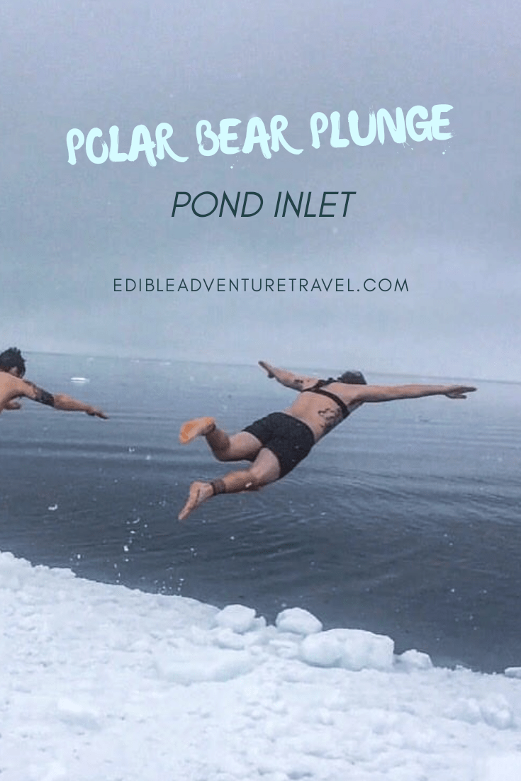 Polar Bear Plunge off the floe edge in Pond Inlet