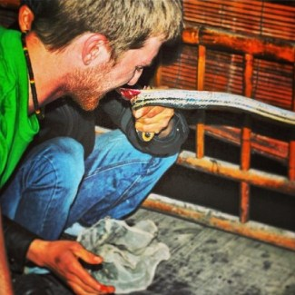Eating Snake in Le Mat