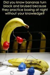 Banana Fights