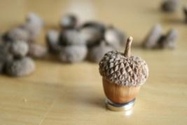 acorncraft1