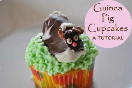 guinea-pig-cupcakes-tutorial
