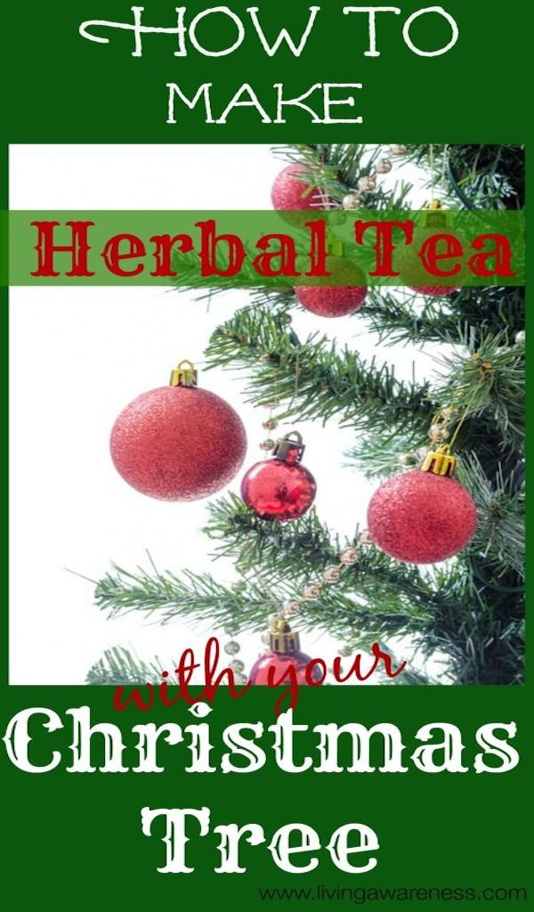 Christmas Tree Herbal Tea – Edible Crafts