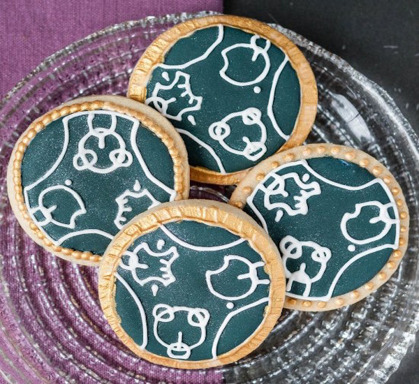 Dr. Who Cookie Favors