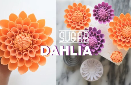 How To Make Gumpaste Dahlias