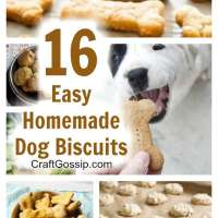 16 Easy To Make Homemade Dog Biscuits