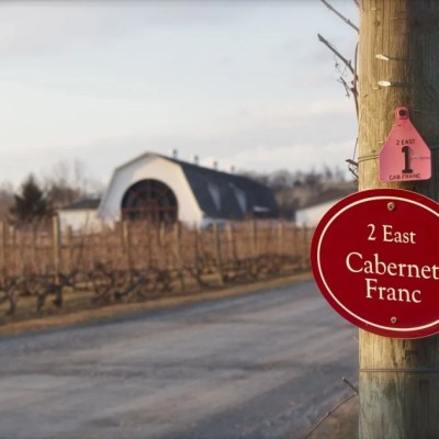 Hudson Valley Wine Trail (yes, we have one)