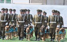 Escuadrón de Perros Policiales deleitan a un millar de niños de Alto Hospicio