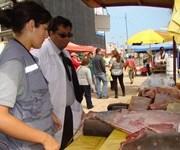 Decomisan pescados y mariscos en pescaderías del sector norte de Iquique