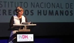 Informe anual del INDH condenó violencia policial en Aysén, Freirina y La Araucanía