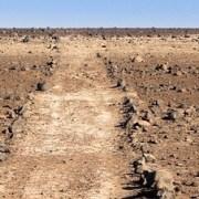"""Experto investigador analiza en Iquique el """"Segundo Camino del Inka en Atacama"""""""