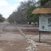 Conaf invita a visitar Parques Nacionales y Reservas, en el Día del Patrimonio