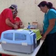 Promueven Programa para tenencia responsable de mascotas y esterilizaciones