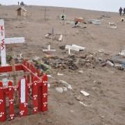 Alto Hospicio: Conceden terremos a microempresarios en cementerio de mascotas
