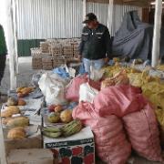 Destruyen 19.260 unidades de huevos  y 2 toneladas de productos agrícolas ingresados por paso no habilitado al país