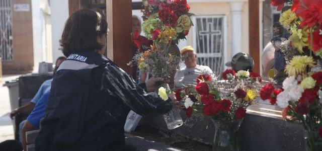 Para evitar presencia del mosquito del Zika, prohiben usar agua en floreros en cementerios