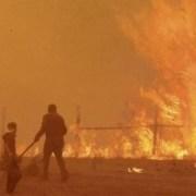 Mega incendios: el historial de omisiones de las autoridades que abonó la tragedia