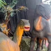 Exhibición animatrónica de Dinosaurios Robotizados ya está abierta en el ex Estadio Cavancha