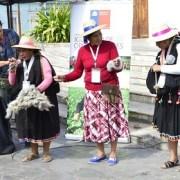 Primera Expo Mujer del Tamarugal permitió que mujeres y emprendedoras rurales mostraran sus productos