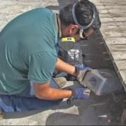 Municipio de Iquique inició instalación de trampas para roedores en parques temáticos de Cavancha y Playa Brava