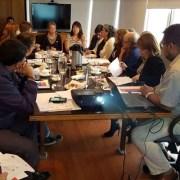 Realizan primera reunión del Comité Regional del Adulto Mayor de Tarapacá