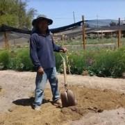 Destinan más de $180 millones para recuperar suelos degradados en Tarapacá el segundo semestre